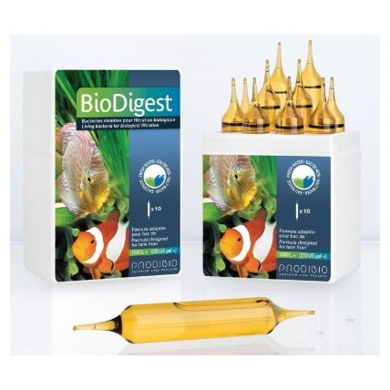 PRODIBIO Biodigest 01 ampola