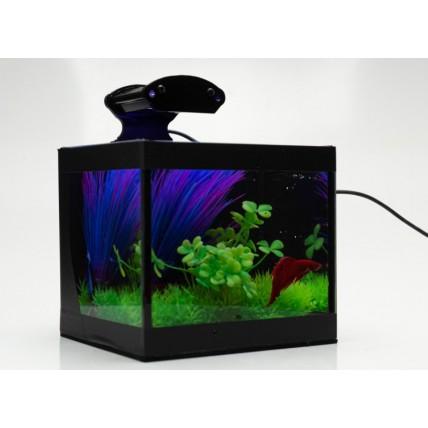Aquario Aquabetta -...