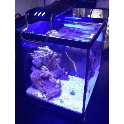 Aquario Marinho 36 litros -...