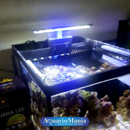 Aquario Marinho 10 litros -...