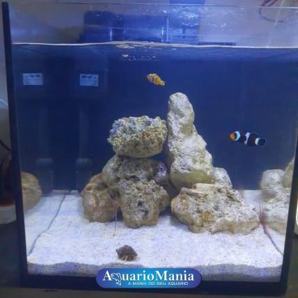 Aquário Marinho 27 litros -...